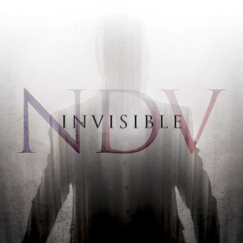 Nick D'Virgilio - Invisible (2020 FLAC)