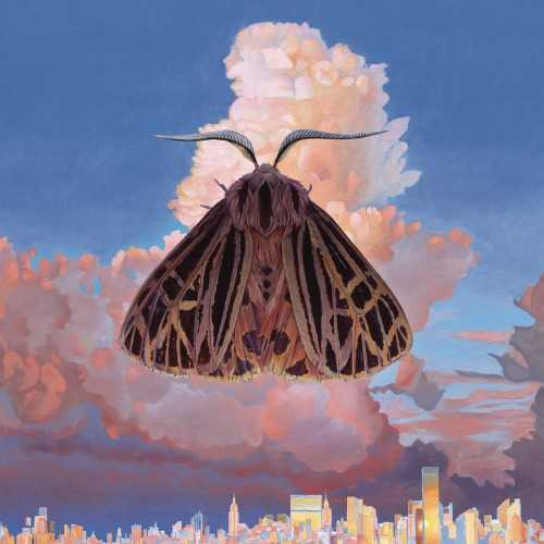 Chairlift - Moth (2016 24/44 FLAC)