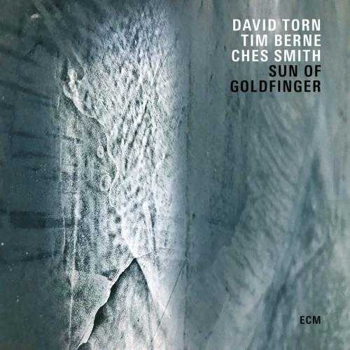 David Torn, Tim Berne, Ches Smith - Sun Of Goldfinger (2019 24/44 FLAC)