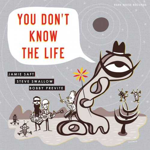 Jamie Saft, Steve Swallow, Bobby Previte - You Don't Know The Life (2019 24/96 FLAC)